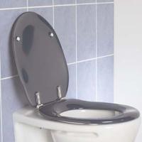 dania-blue-toilet-seat-6174.jpg
